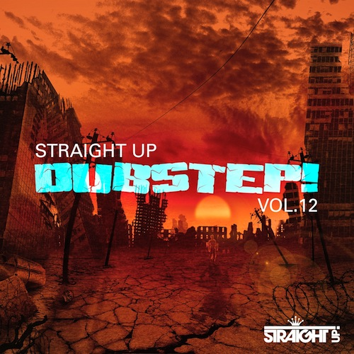500Various Artists - Straight Up Dubstep! Vol 12