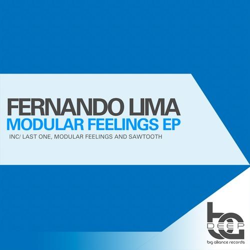 Fernando Lima, Modular Feelings